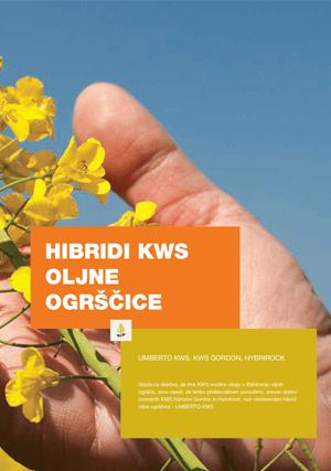 KWS oljna ogrščica katalog 2019