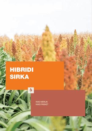 KWS hibridi sirka katalog 2019